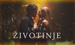 EDITA - ZIVOTINJE