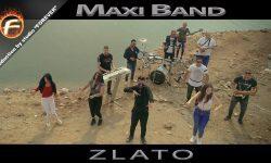 Maxi Band ZLATO