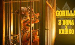 2BONA x KRISKO GORILLA Official Video